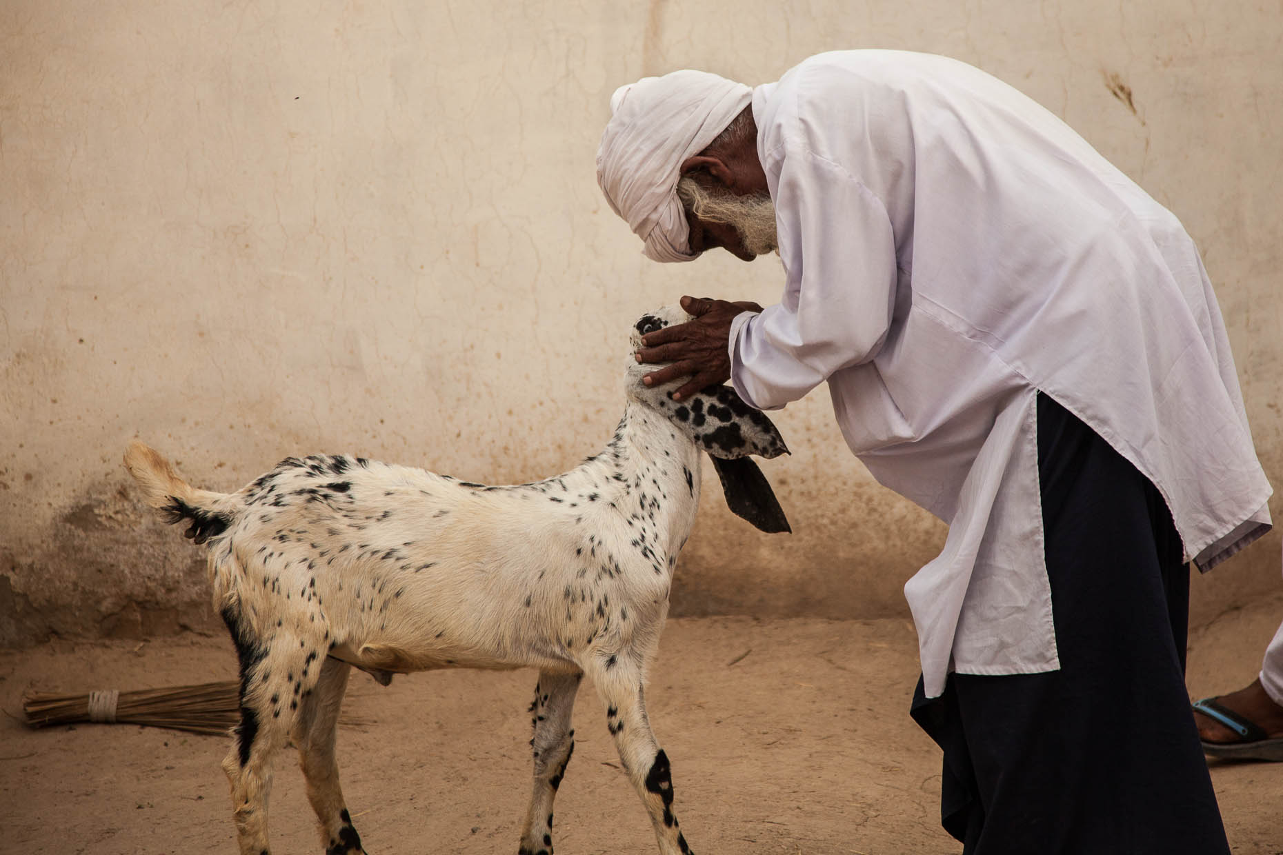 Elderly-man-with-goats-Pakistan