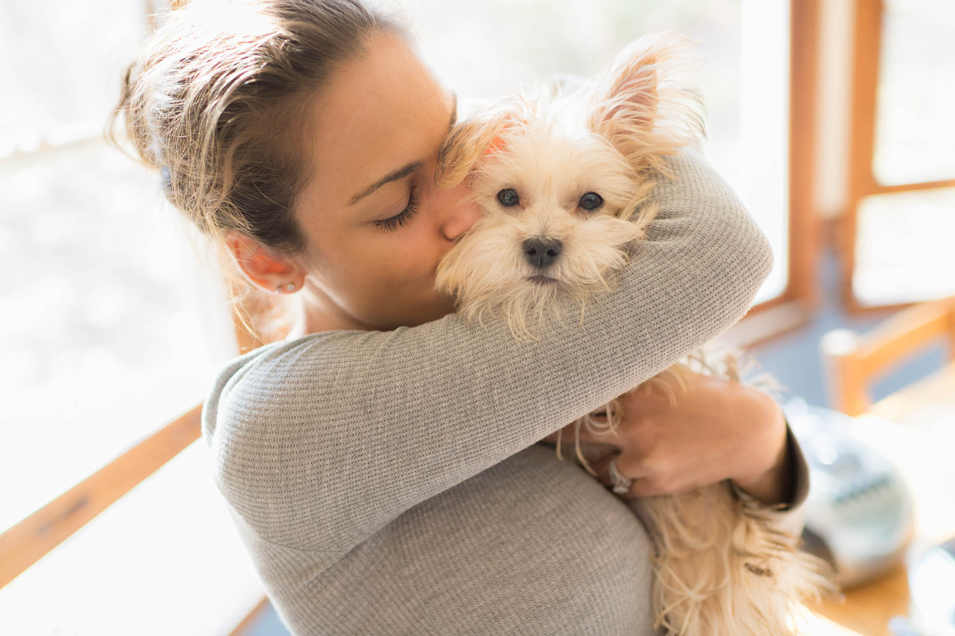 Young-woman-hugging-morkie-dog